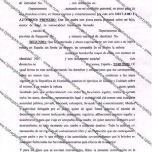 Autorizacion de Reagrupacion Familiar Para España
